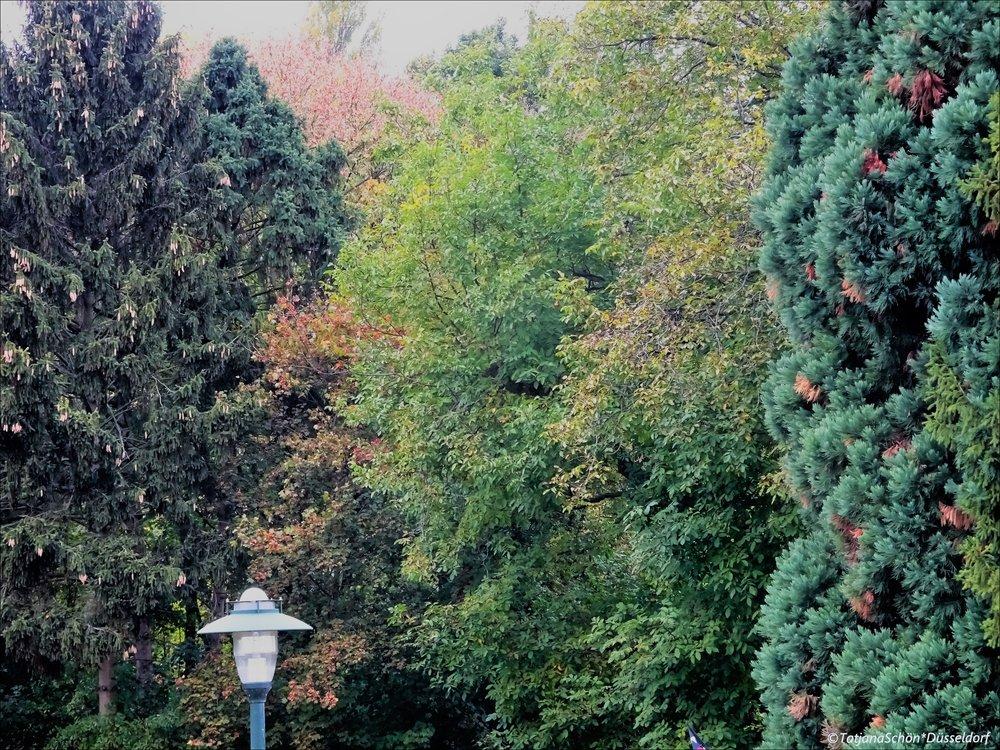 2008-10-1044.JPG