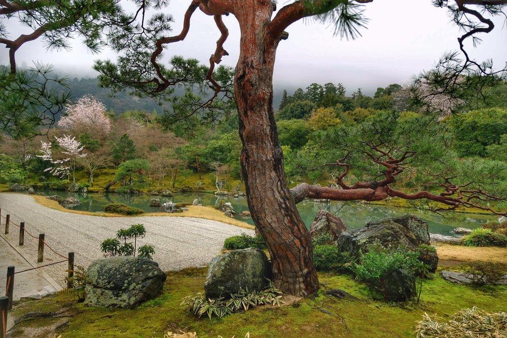 UNESCO Zen Garden.