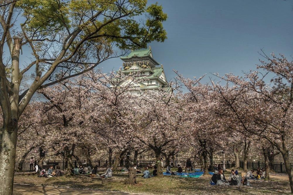 Nishinomaru garden.