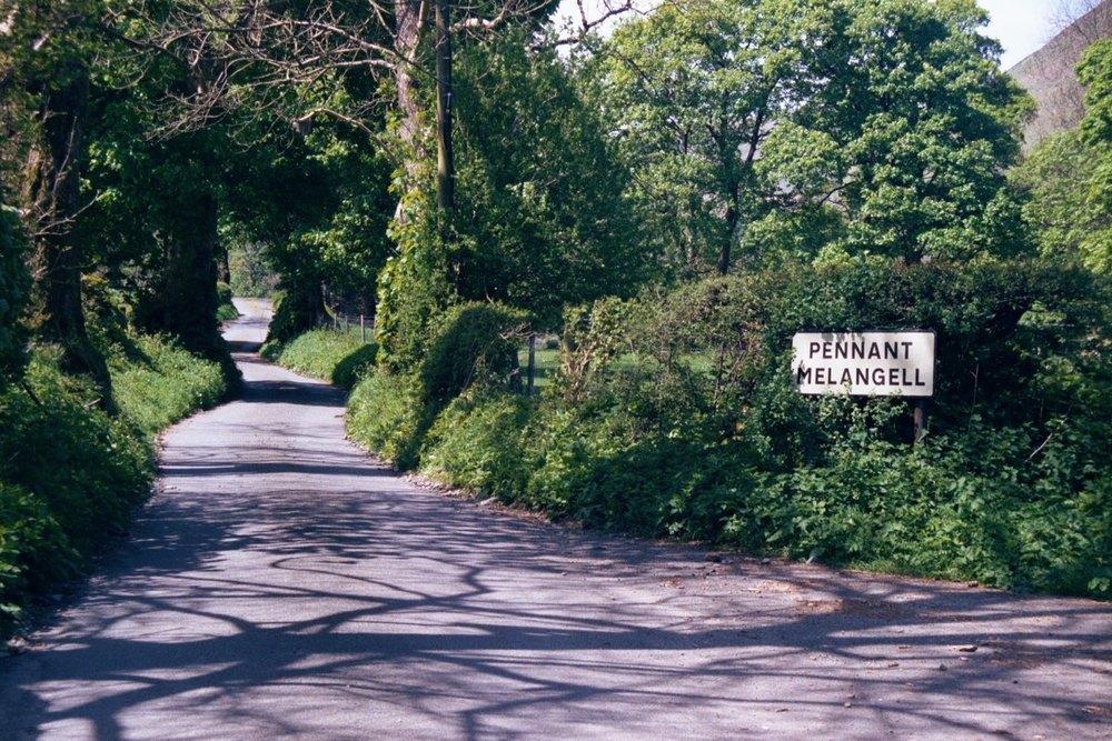 road summer 1108.jpg