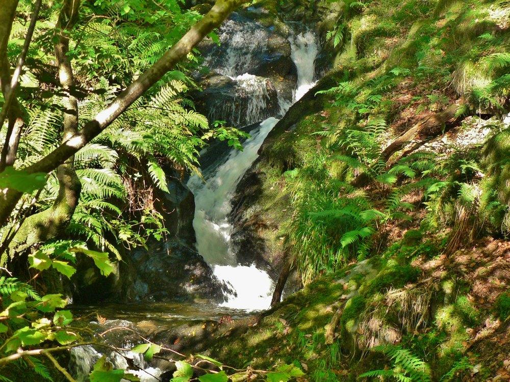 stream cascade 1012.jpg