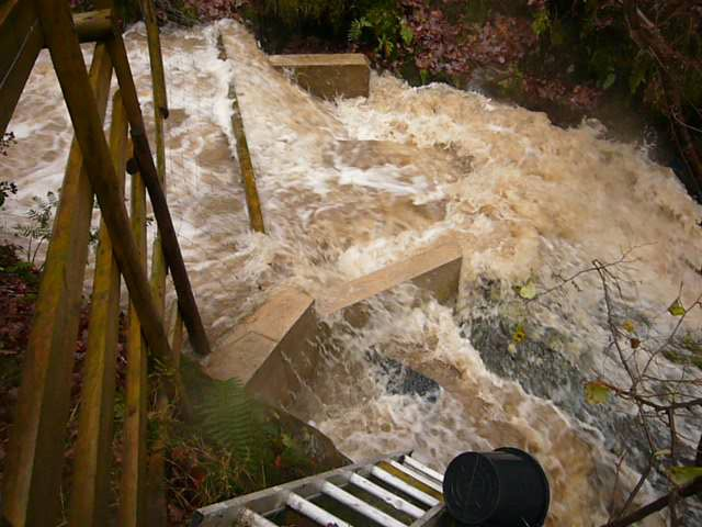 weir in flood.jpg
