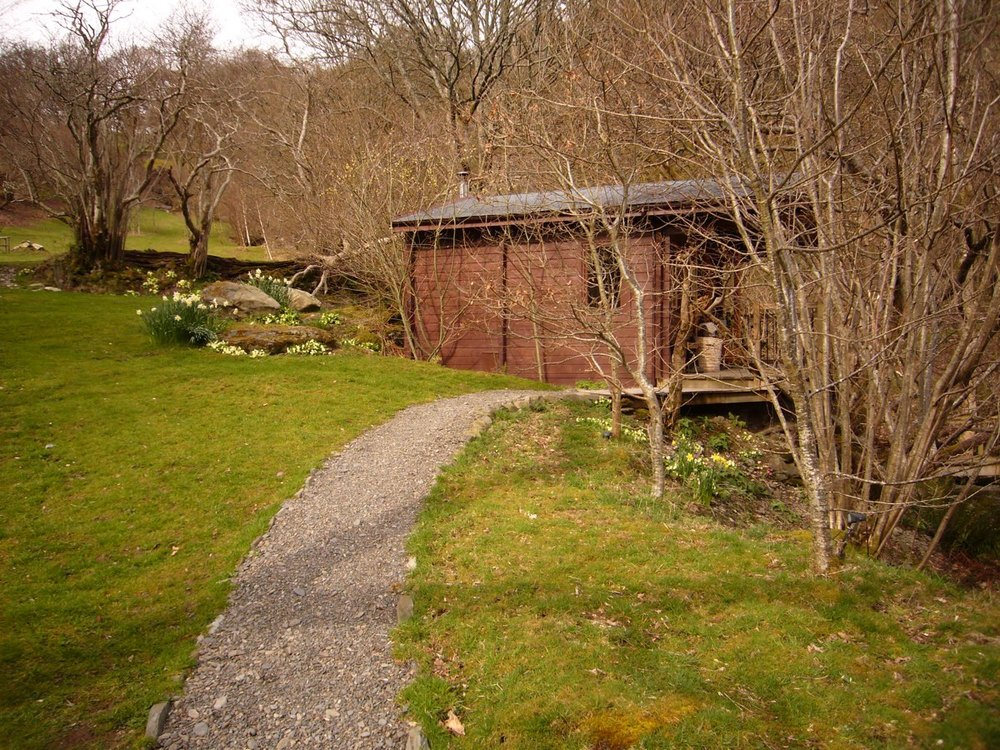 cabin primroses.jpg