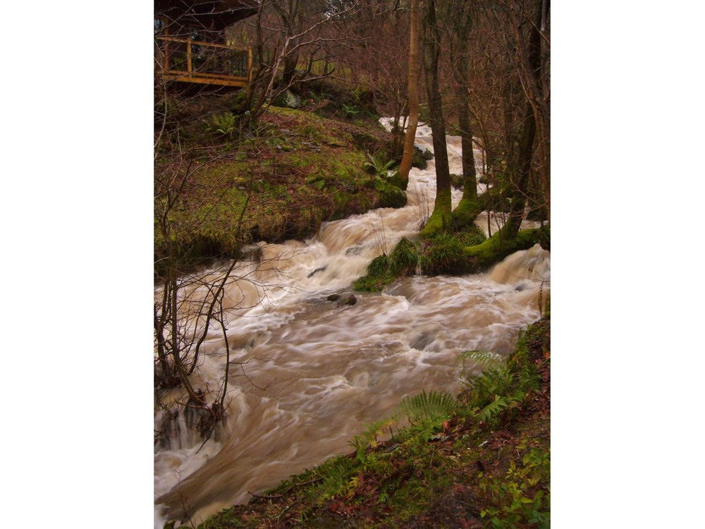 cabin flooded stream 0112.jpg