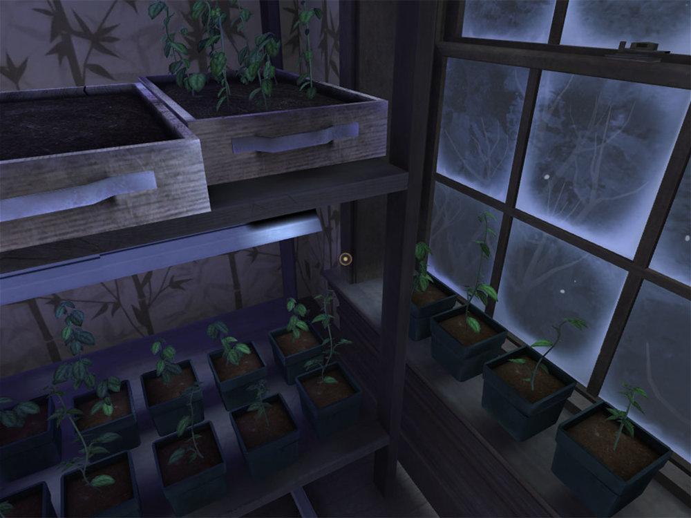 Dead Secret Circle--Rose's plants (1)