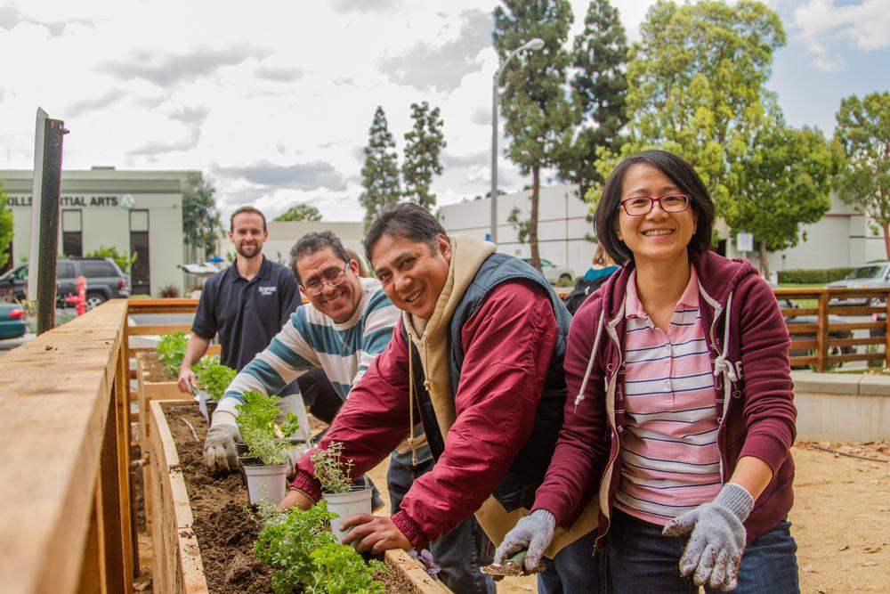 Employees Planting Tier Herb Box.jpg