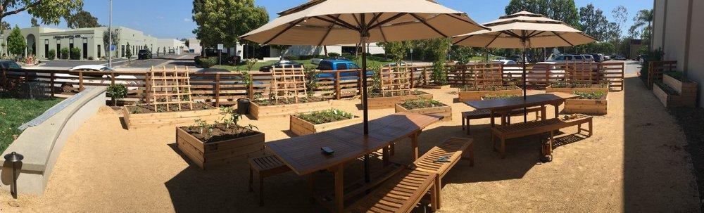Commercial Garden install