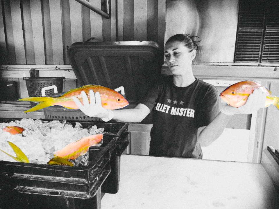 Female Fillet Master w Yellowtail.jpg
