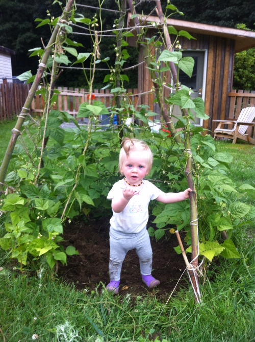 Our daughter's first garden.