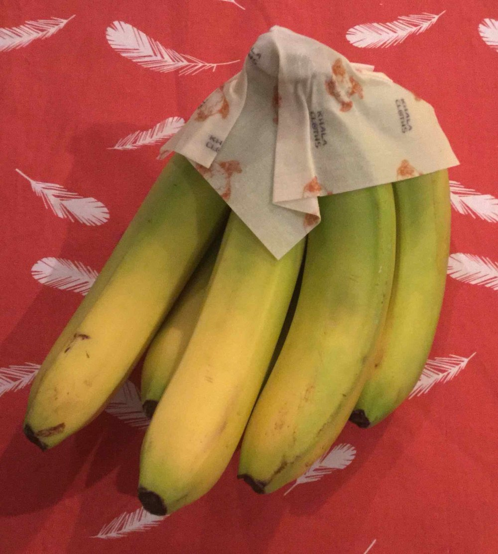 Bananas wrapped in a Khala Cloth to manage naturally occurring ethylene gas