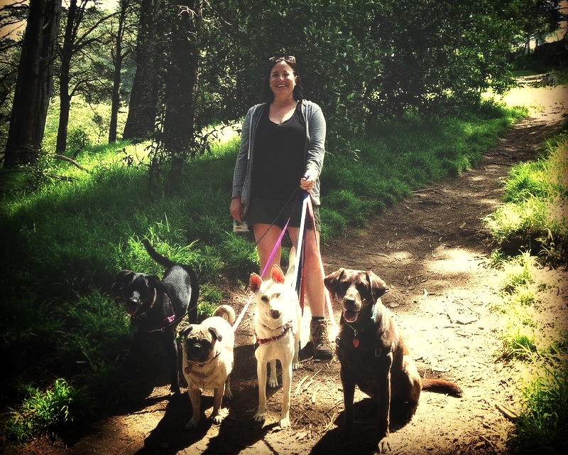 These dogs agree that Stephanie Manor is the best dog walker in Oakland, and Adventure Time Pet Care offers the best group dog hikes in Oakland and Berkeley!
