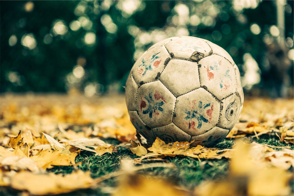 Soccer Ball in Leaves.jpg