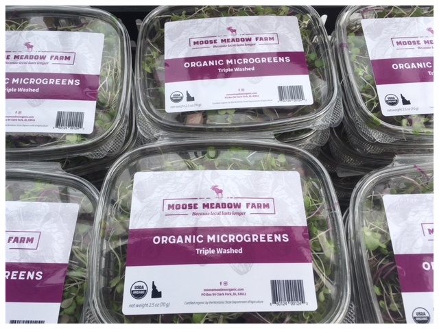 Microgreens ready for grocery stores