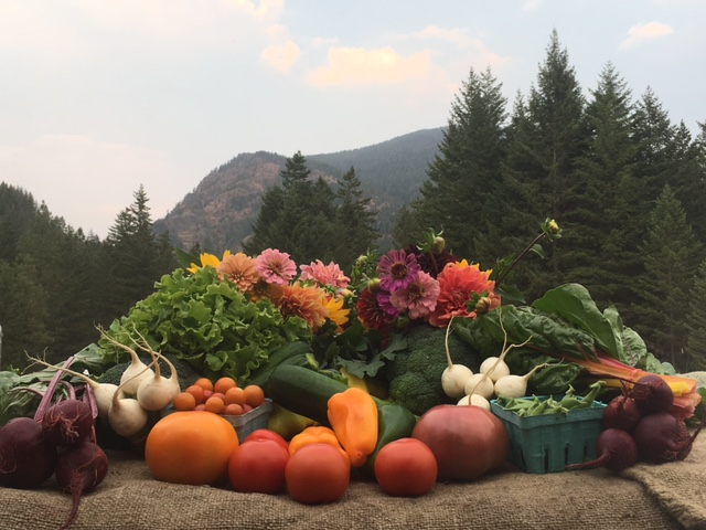 A cornucopia of fresh, organic produce to choose from every week!