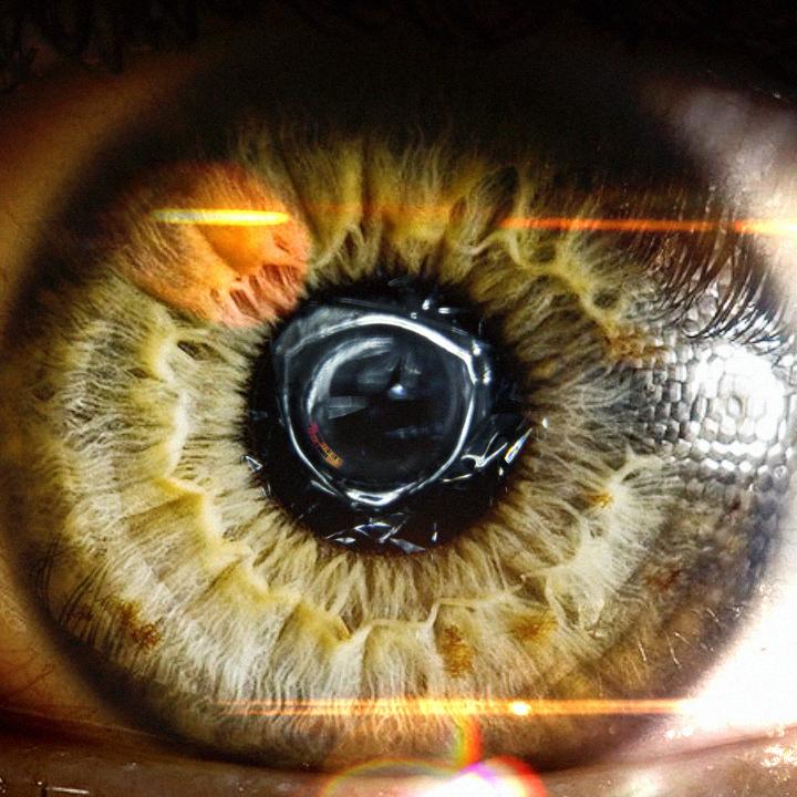 Eye_Composite.jpg