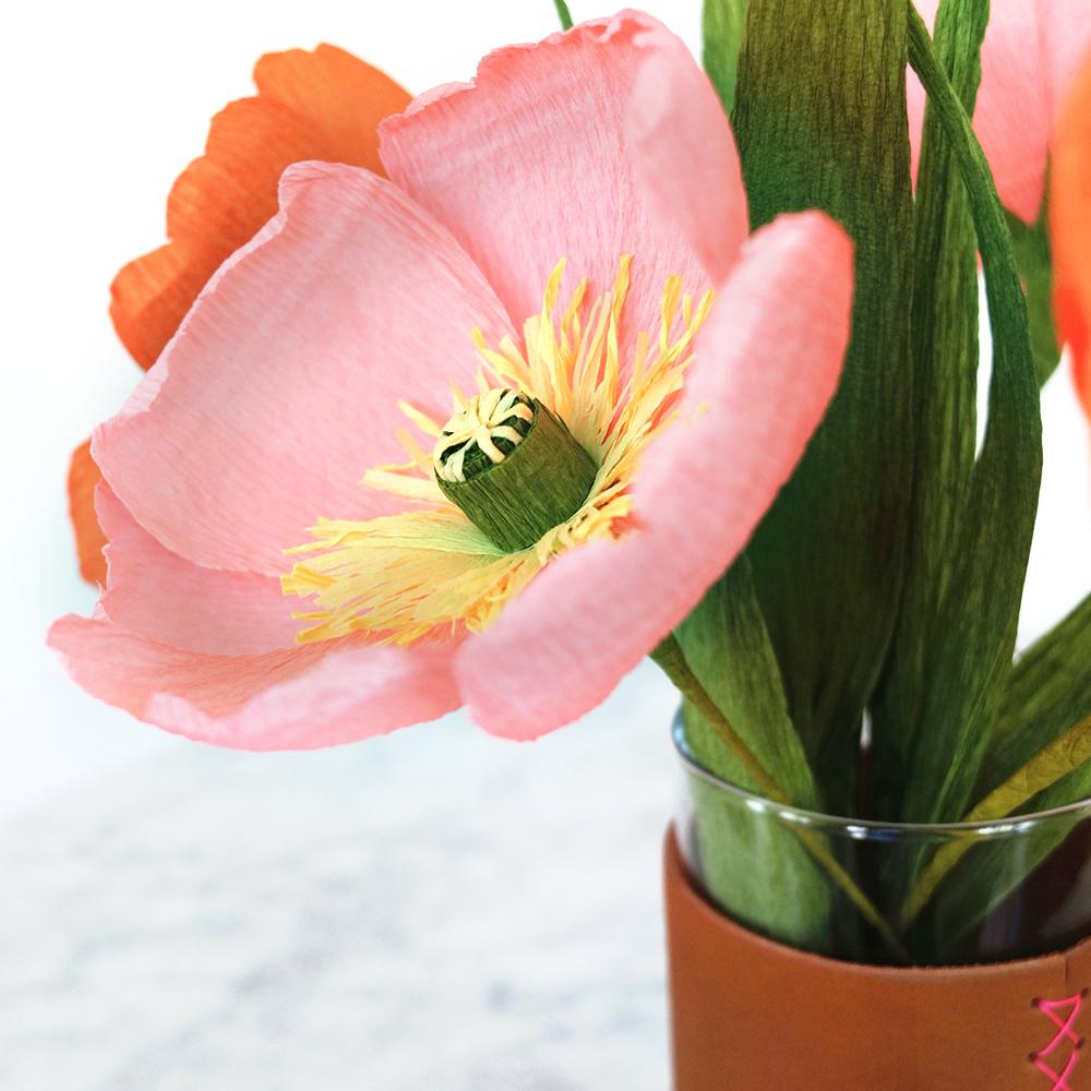 PR_Spring_Pop_4.jpg