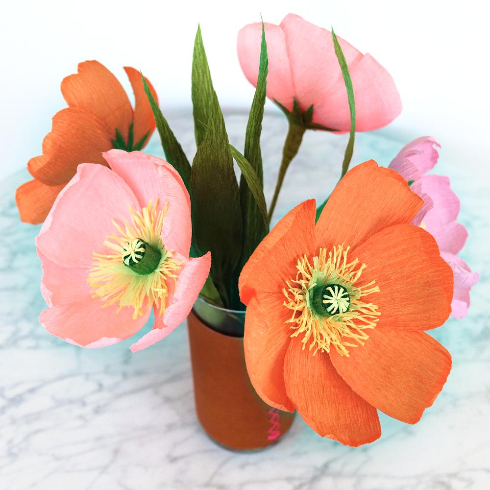 PR_Spring_Pop_.jpg
