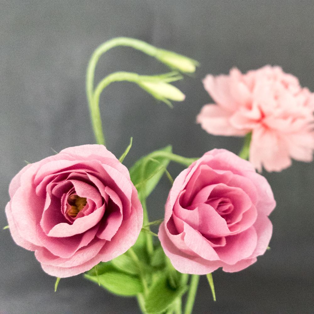 Paper Rose Co. Lisianthus Close Up