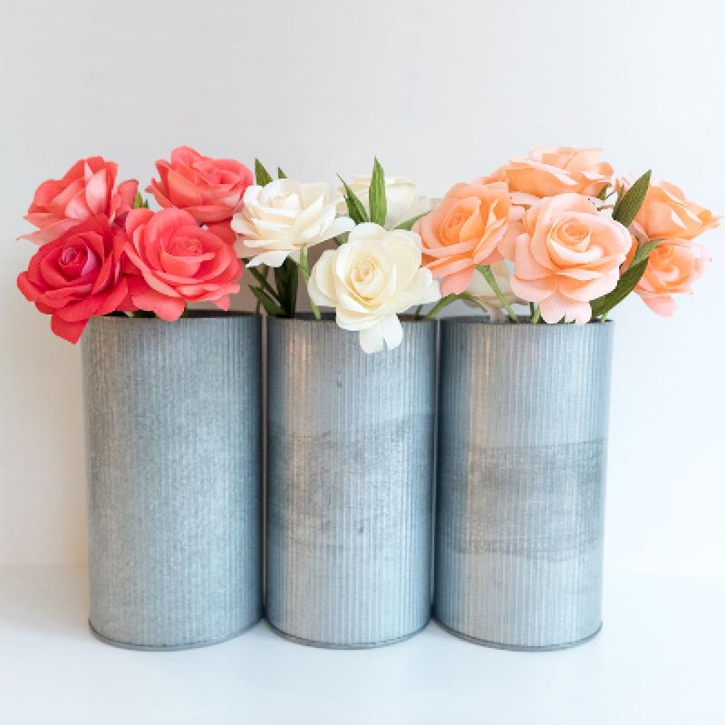 PaperRoseCo Perennial Update Roses