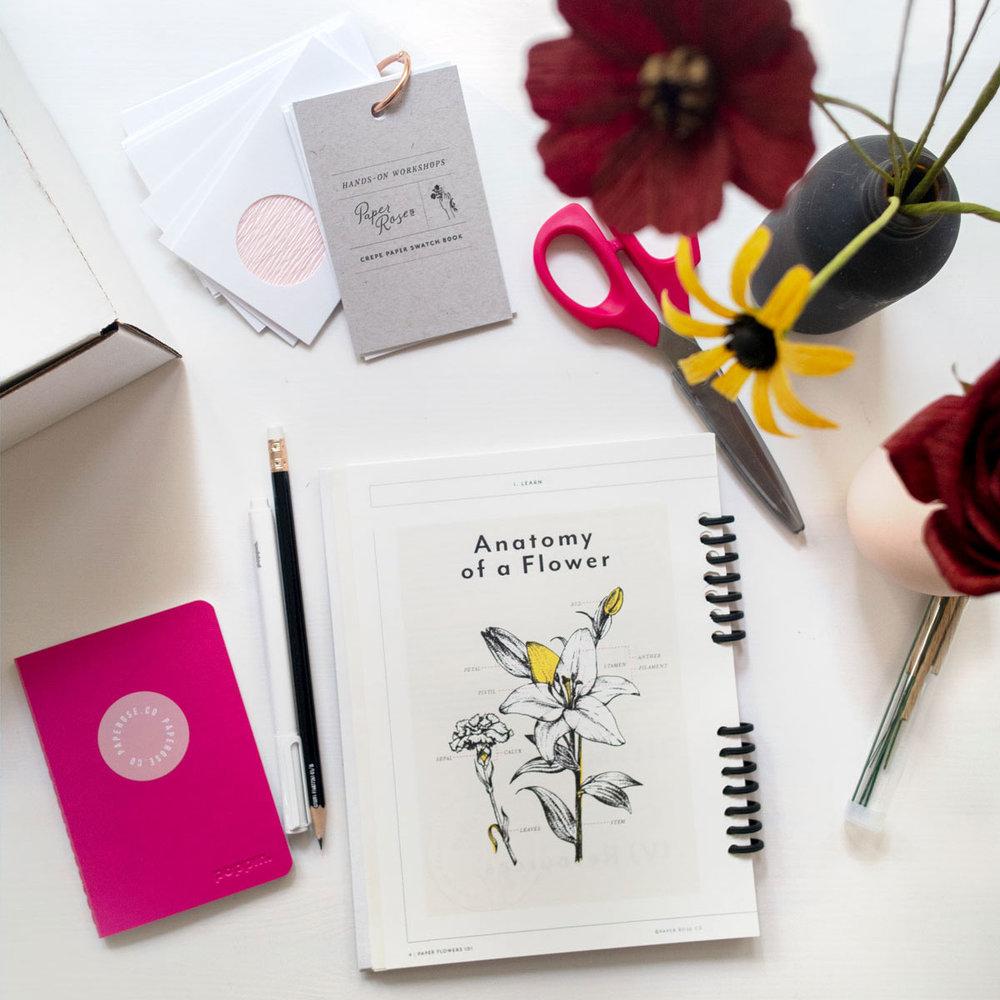 PaperRoseCo_Workbook_3.jpg