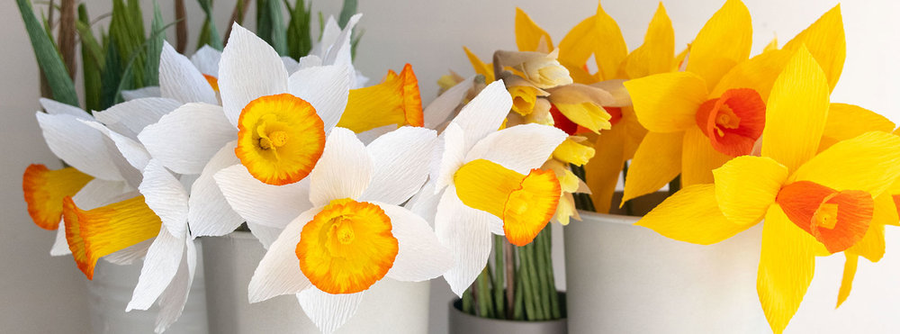 Spring_fb.jpg