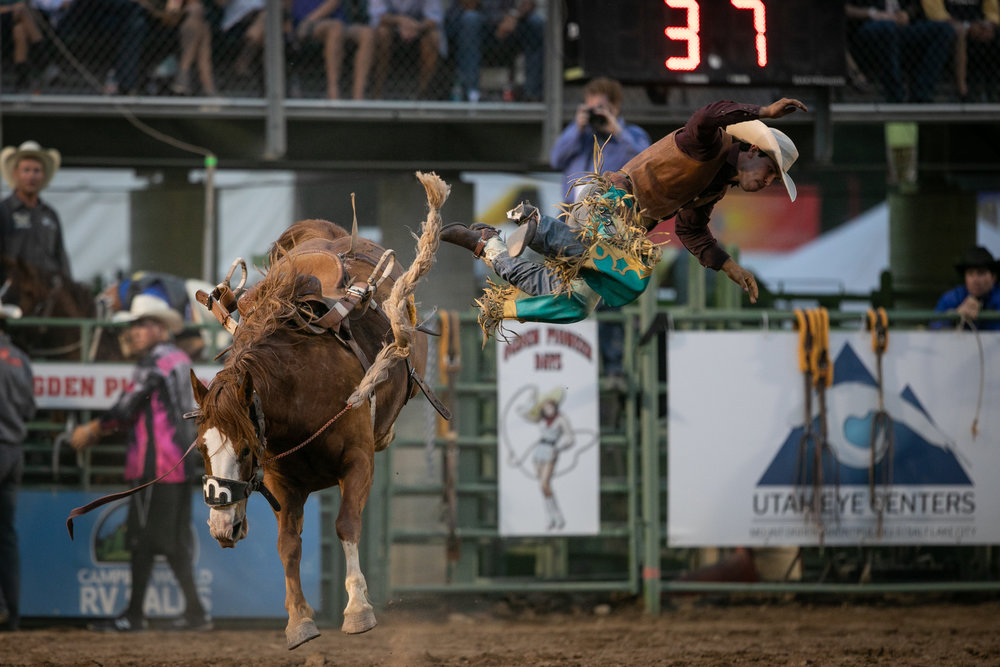 Tyler Turco, Saddle Bronc rider from Franktown, Colorado get bucked off his horse during the third night of the Ogden Pioneer Days Rodeo on Saturday, July 21, 2018.