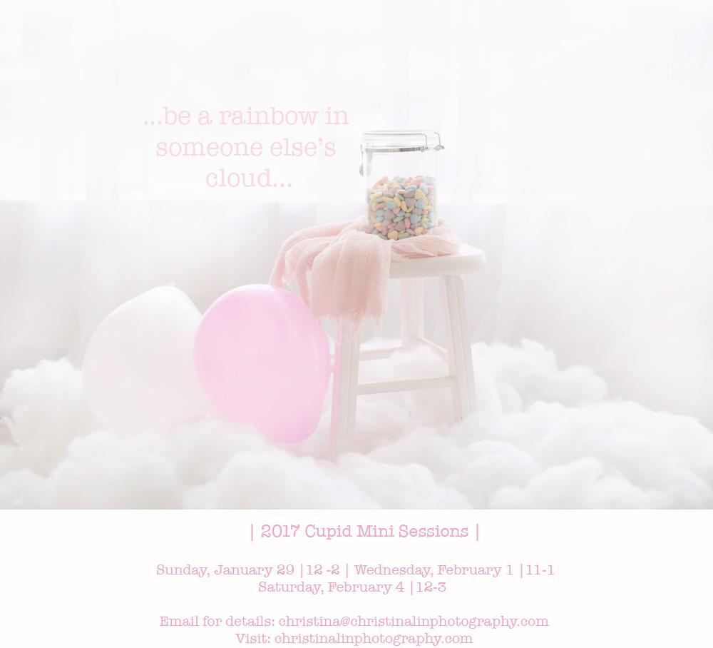 2017 Cupid Minis.jpg