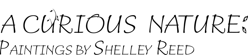 Shelley Reed logo outline v2.png