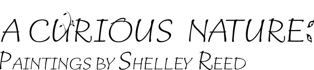 Shelley Reed logo outline v2.png
