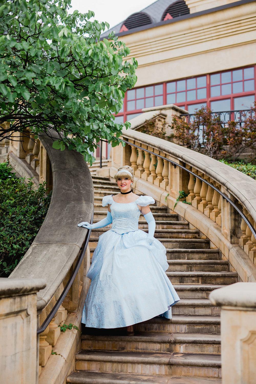 CinderellaSteps.jpg
