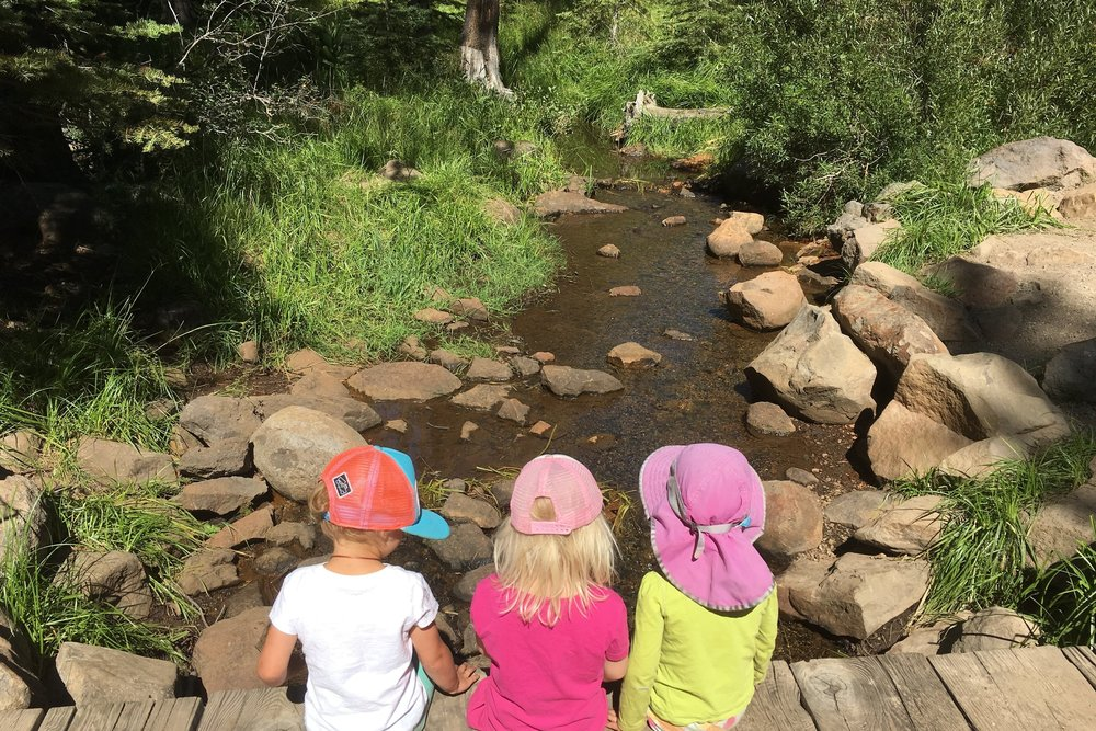 Conecta Preschool -