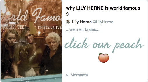 click our peach lily herne.jpg