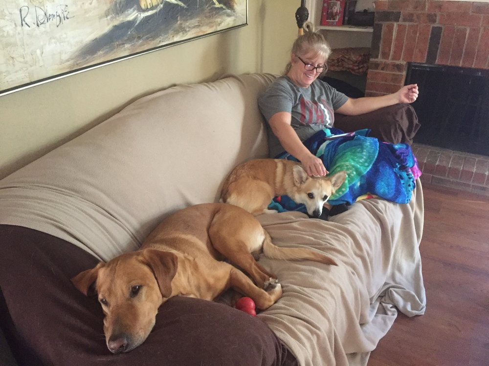 "These dogs are mildly obsessed with their ""Granny"""
