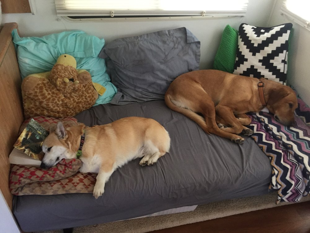 "The boys are like: ""As long as you take our couch, we can live anywhere, Mom!"""