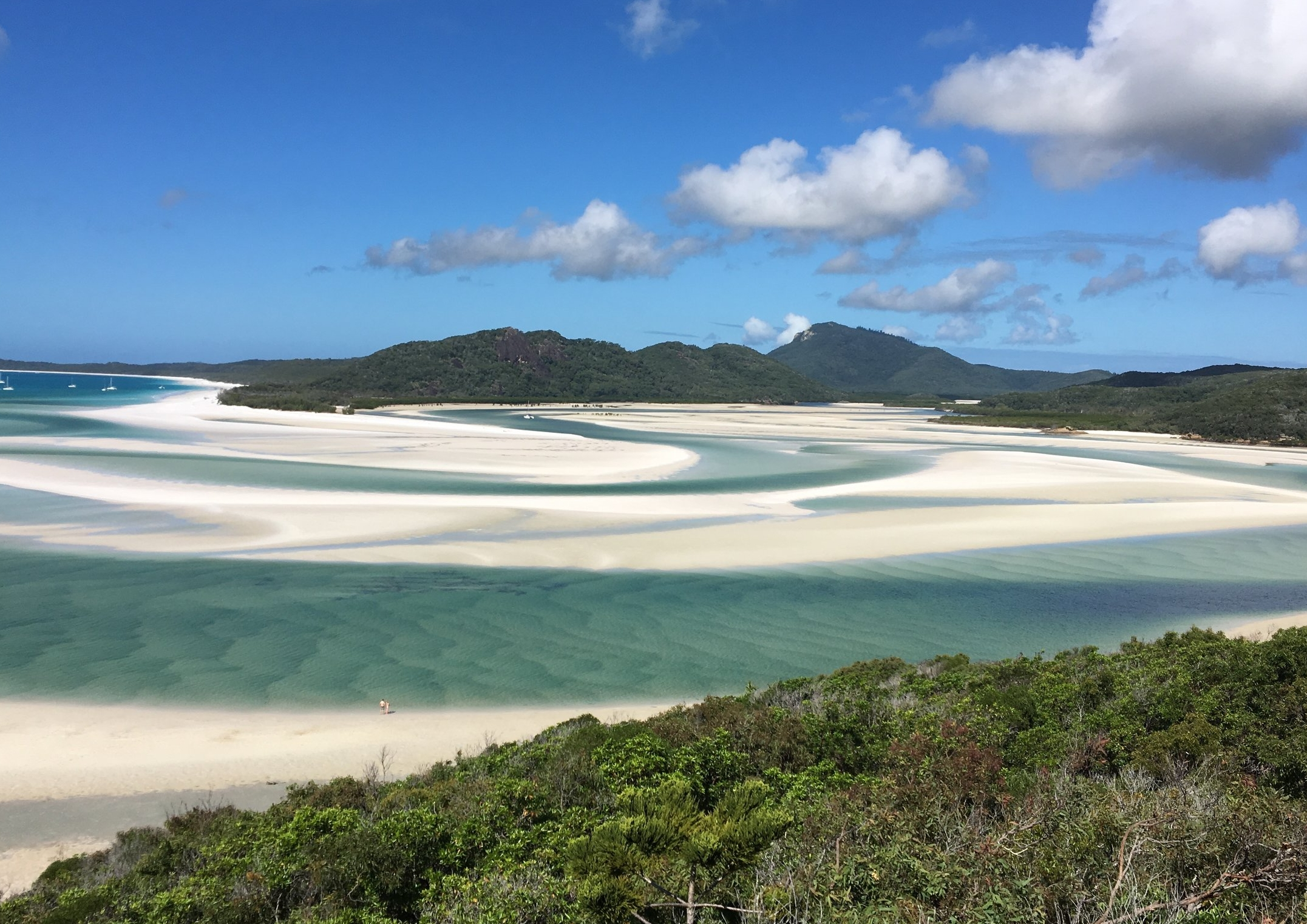 cairns to sydney travel guide