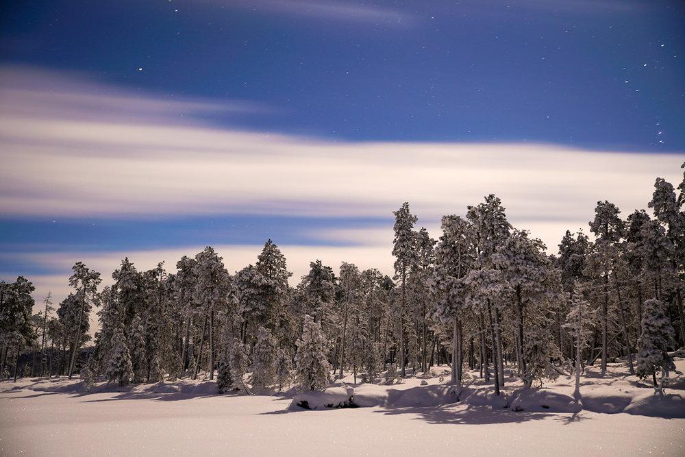 Winter night lapand.jpg