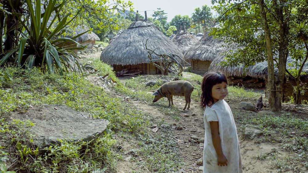 Kogi Village