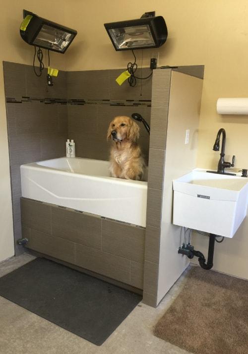 flagstaff-dog-wash-home-groomer