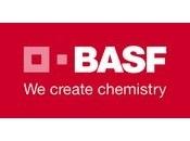 BASF_done.jpg