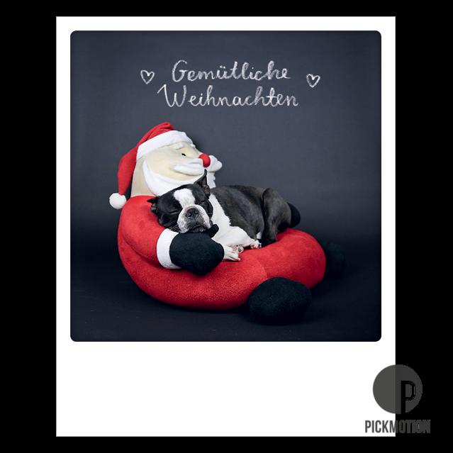 """Postkarte """"Gemütliche Weihnachten Hund"""" von PICKMOTION"""