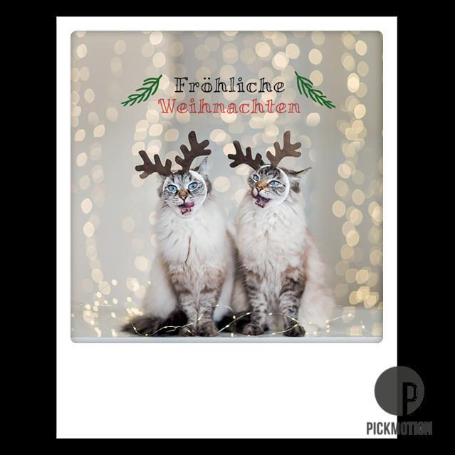 """Postkarte """"Fröhliche Weihnachten Katzen"""" von PICKMOTION"""