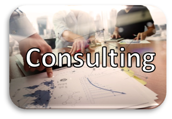 Consulting Button.png