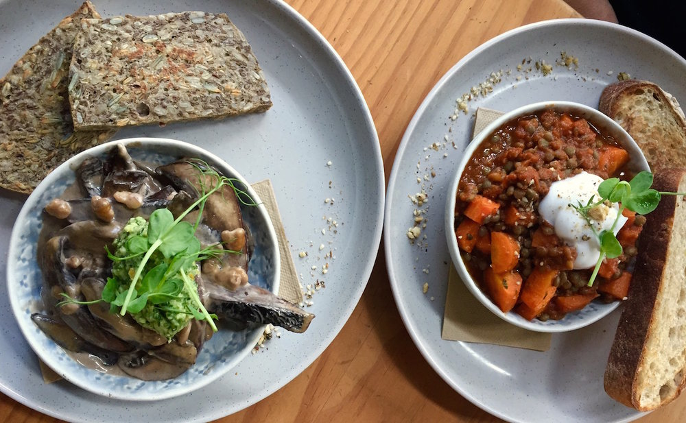 V For Vege: There's a whole lot of plant power on the menu at Eden Terrace cafe, Rabbit.
