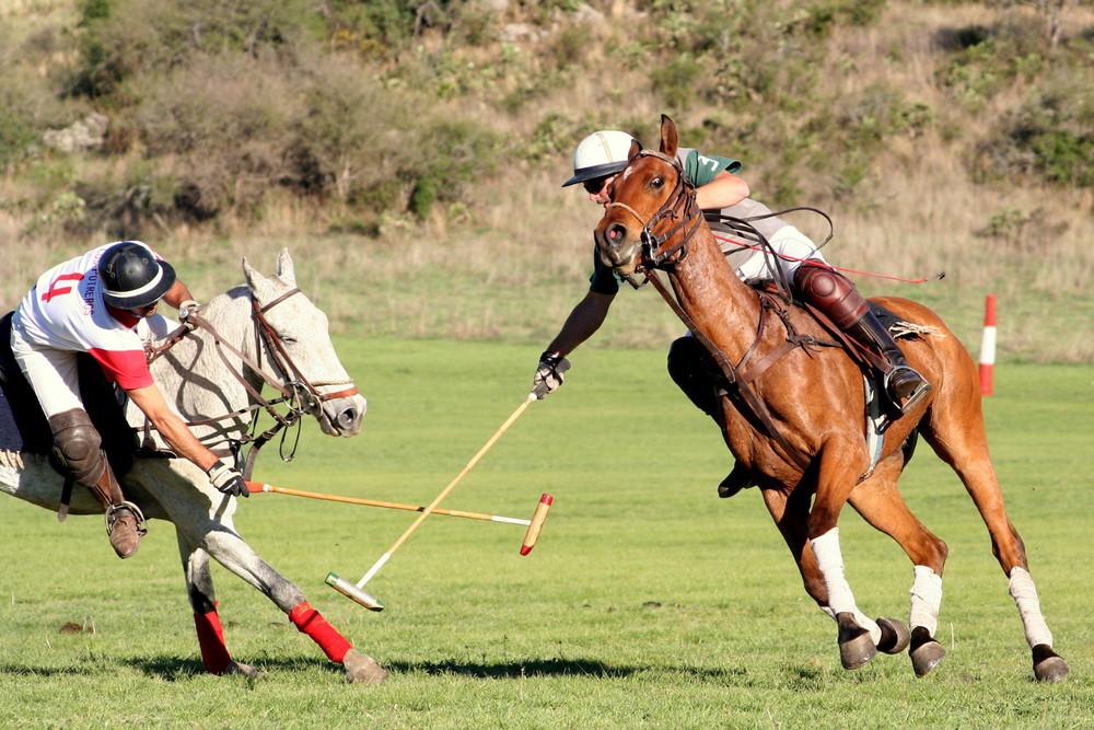 Polo Game at Estancia Los Potreros