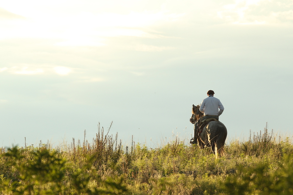 Horseback Riding in the Córdoba Countryside