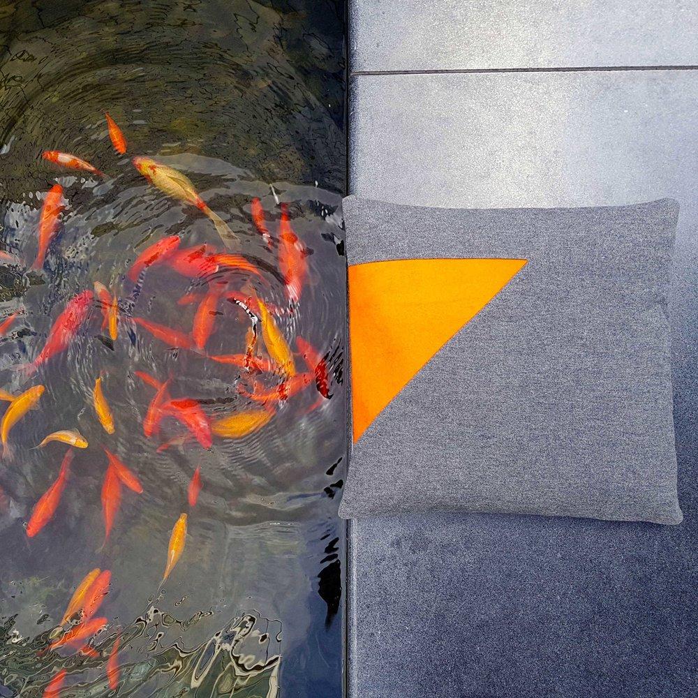 cushn and gold fish.jpg