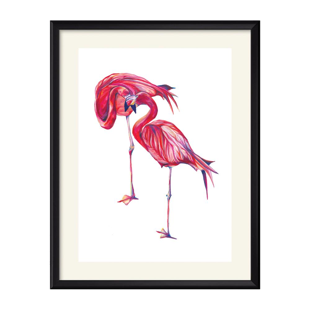 flamingos.png