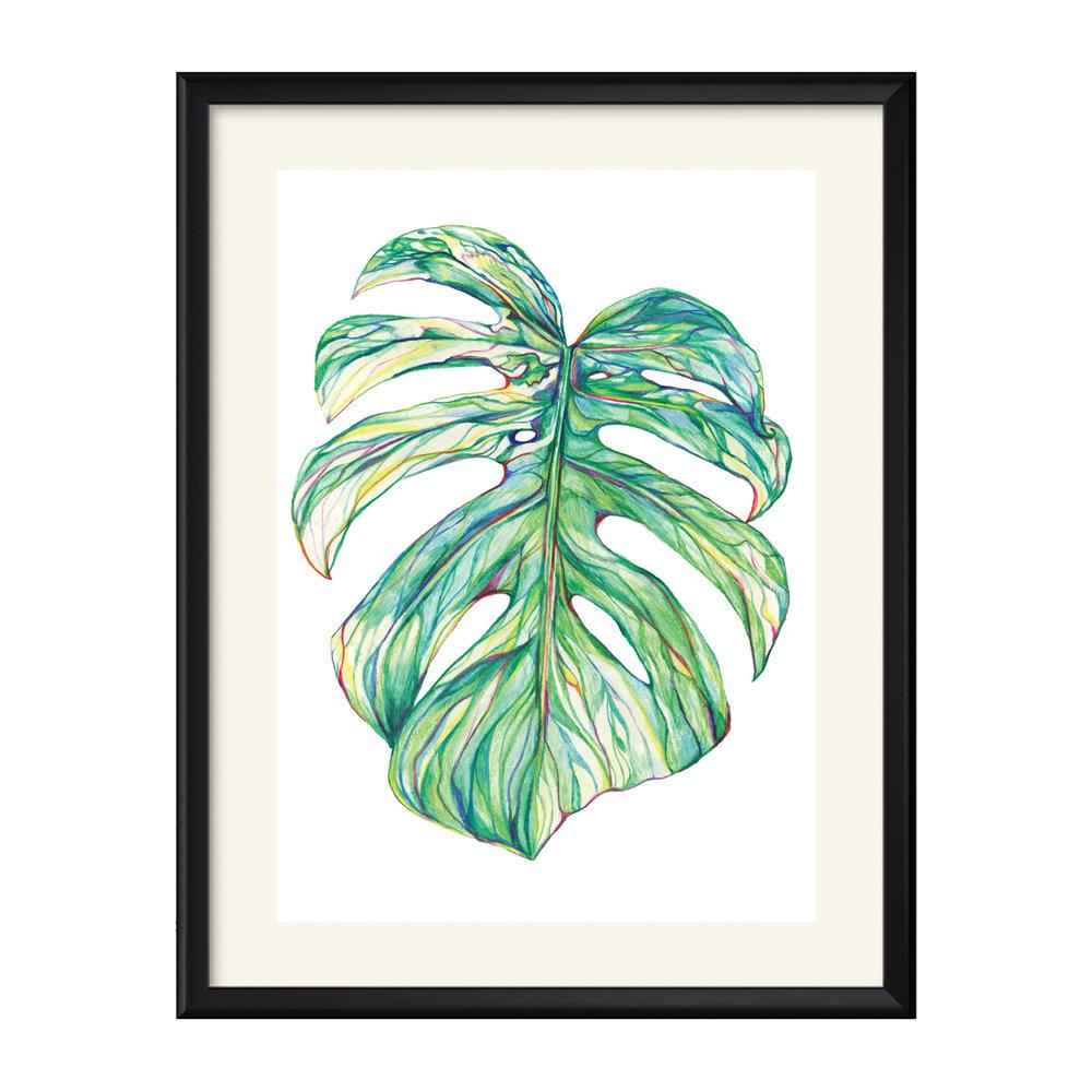 Leaf Study 03.jpg
