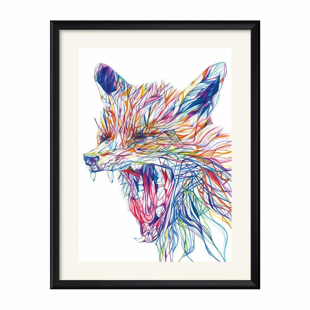 Yawning Fox.jpg