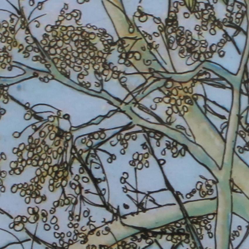 Eucalyptus (detail)